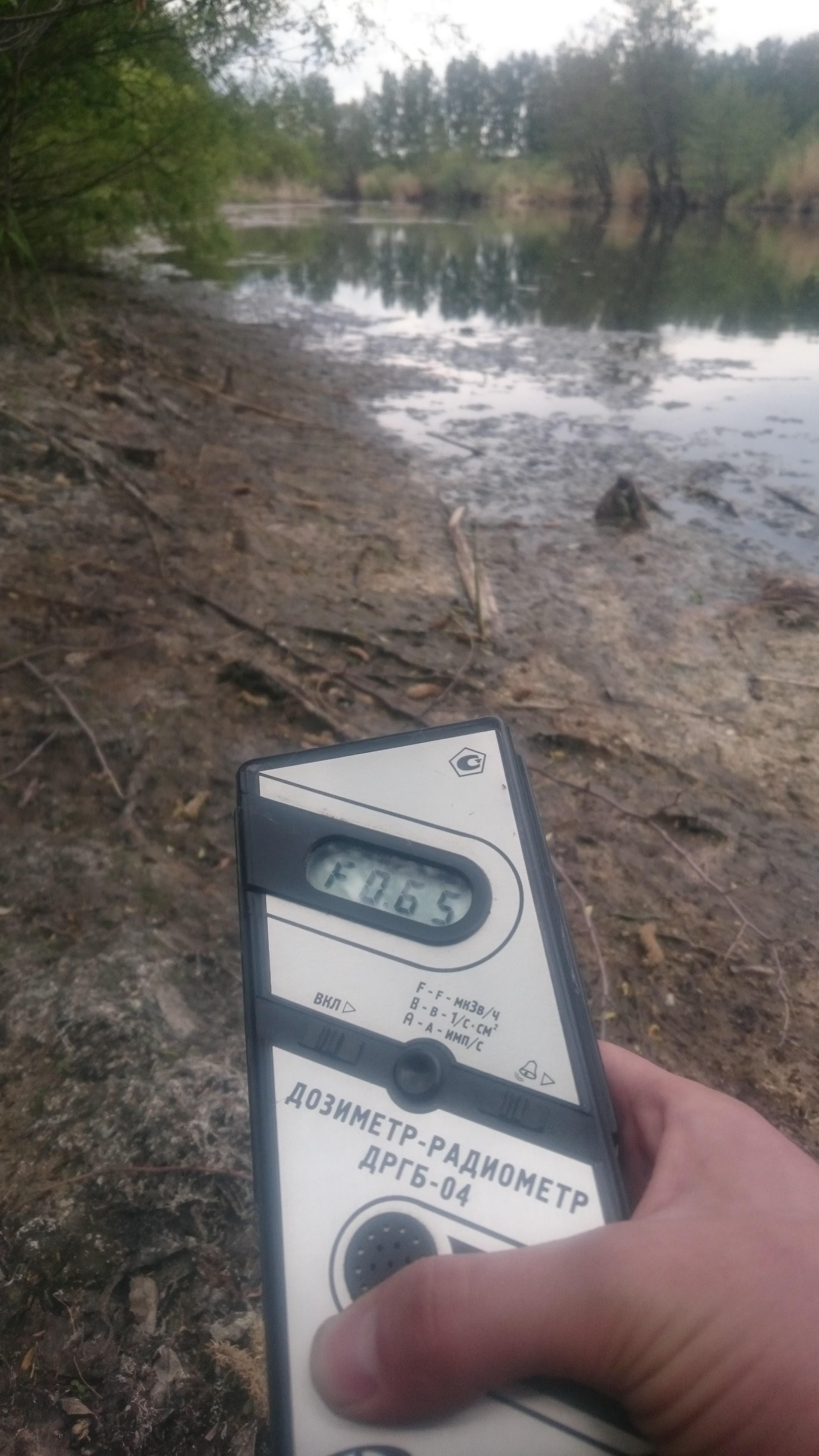 Точка измерения МЭД гамма-излучения у берега реки Теча в окрестностях поселка Муслюмово Кунашакского района Челябинской области